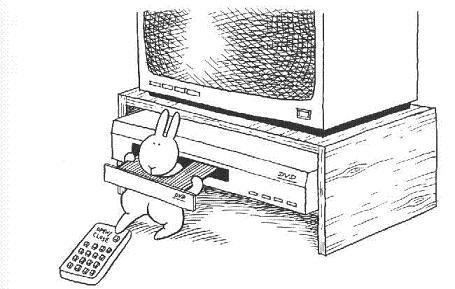 Conejo Suicida