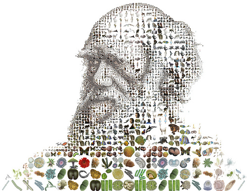 Charles Darwin for Time Magazine por tsevis.